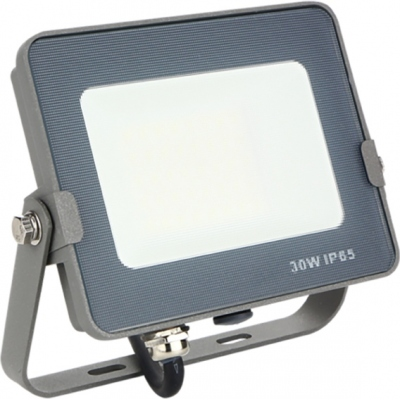 SILVER SANZ PROYECTOR FORGE+ 172031 LED 30W 3000K